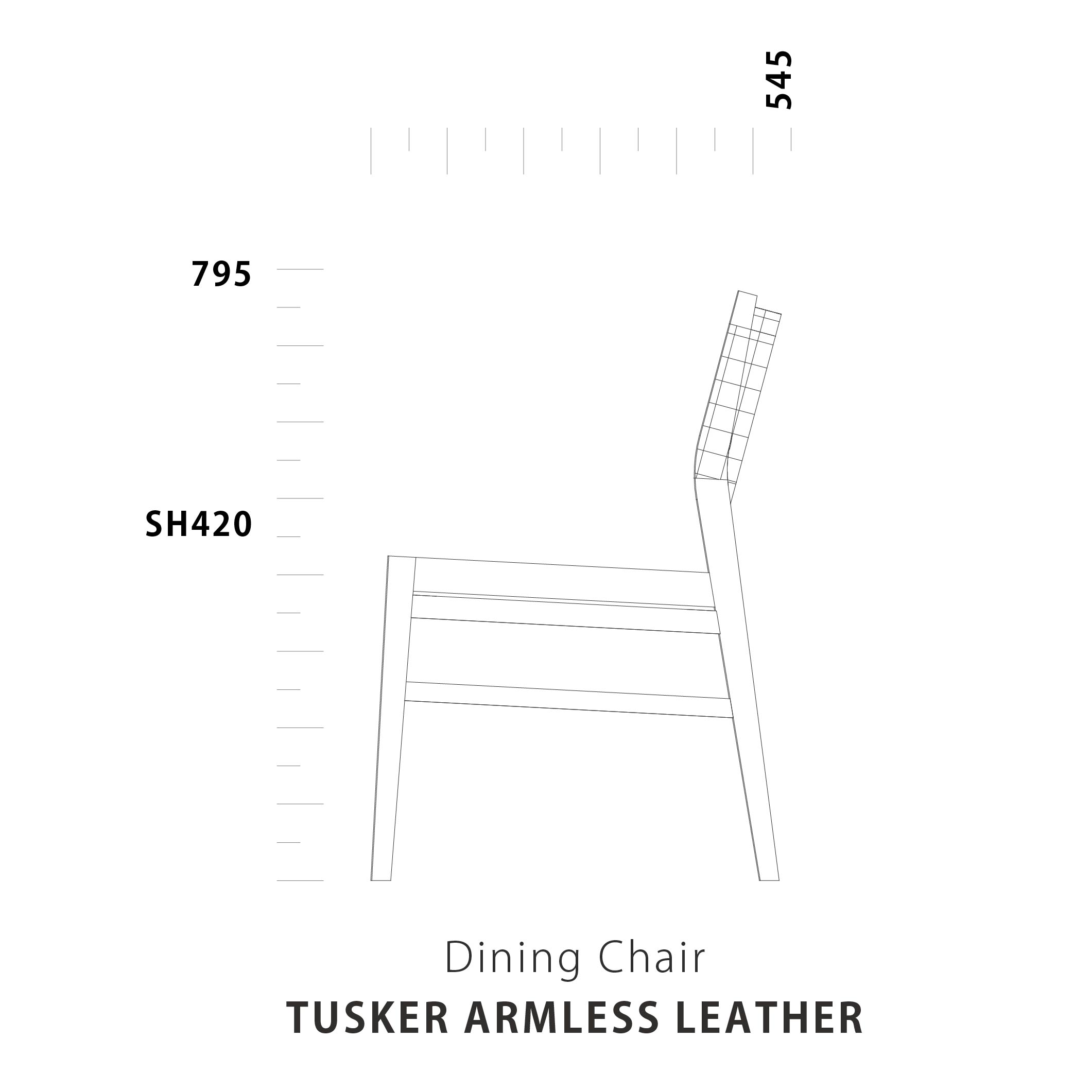Dining Chair TUSKER Leather